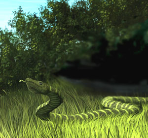 a narrow fellow in the grass A narrow fellow in the grass a narrow fellow in the grass occasionally rides you may have met him,--did you not, his notice sudden is the grass divides as with a comb.